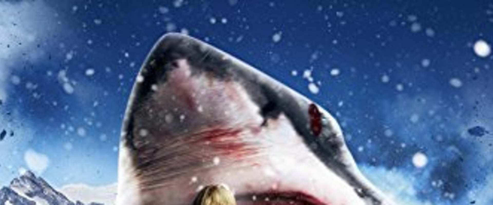 Avalanche Sharks background 1