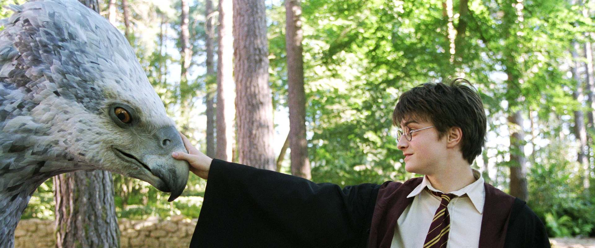 Harry Potter and the Prisoner of Azkaban background 2