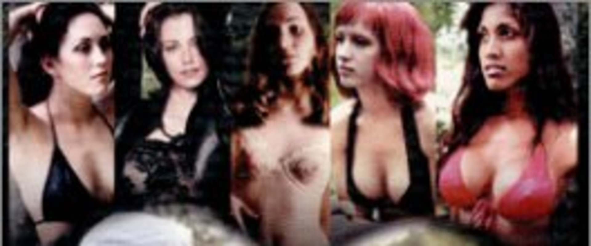 Erotic Survivor background 1