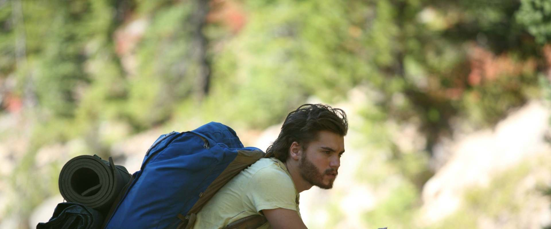 Into the Wild background 2