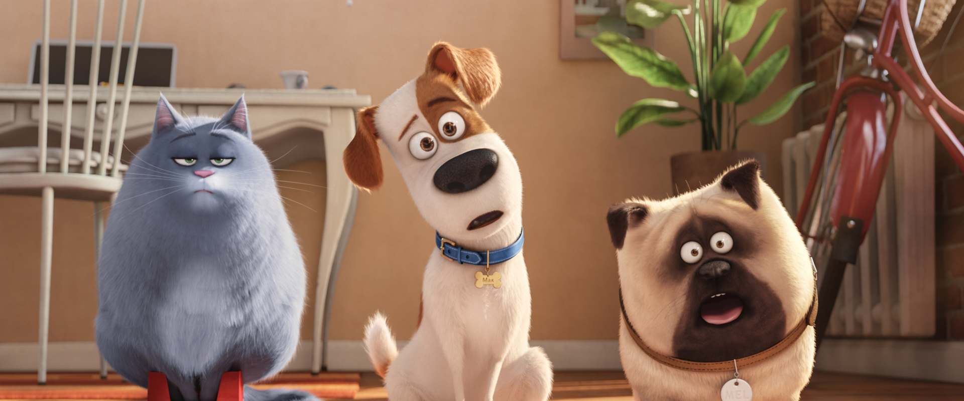 The Secret Life of Pets background 1