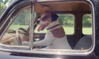 My Dog Skip Movie Still 2