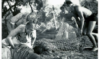 Creature from the Black Lagoon Movie Still 8
