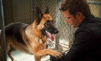 Cats & Dogs 2 : The Revenge of Kitty Galore Movie Still 4