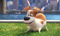 The Secret Life of Pets Movie Still 7