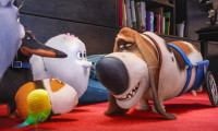 The Secret Life of Pets Movie Still 6