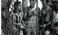 Creature from the Black Lagoon Movie Still 4