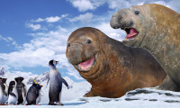 Happy Feet Movie Still 3