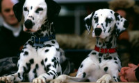 102 Dalmatians Movie Still 6