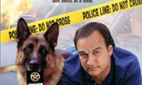 K-9: P.I. Movie Still 5