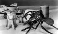 The Incredible Shrinking Man Movie Still 4