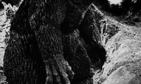 King Kong vs. Godzilla Movie Still 4