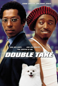 Double Take Poster 1