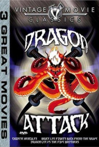 Dragon Attack Poster 1