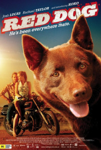 Red Dog Poster 1